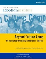 Beyondculturecamp-donaldson