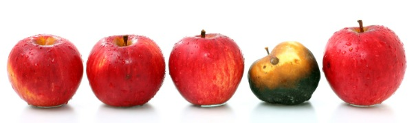 A line of five red apples in a row. The second one from the right is spoiled.